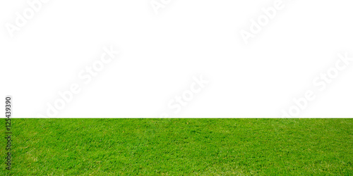 Fototapety, obrazy: Green grass isolated on white background