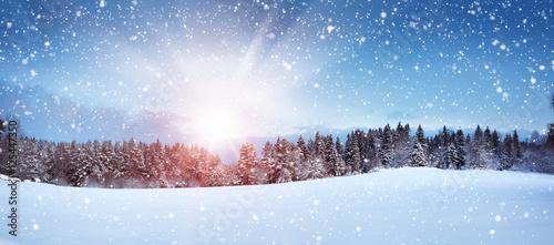 Spoed Foto op Canvas Blauwe hemel Trees in winter landscape in late evening in snowfall