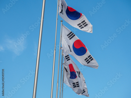 Fotografie, Obraz  South Korean Flag waving on wind