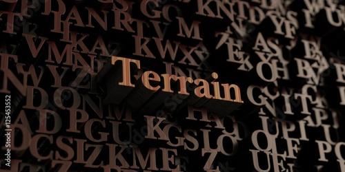 Fotografie, Obraz  Terrain - Wooden 3D rendered letters/message