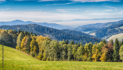 Poster Hill Black Forest Panorama HDR
