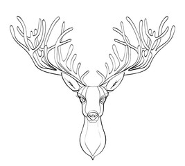 Fototapetadeer head. Beautiful horns. speaking look. Vector illustration