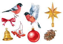 Bullfinches And Christmas Decoration , Watercolor On The White Background