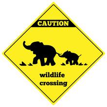 Beware Elephant Traffic Sign. Elephant Warning Traffic Sign. Warning Traffic Sign Isolated On A White Background. Wildlife Crossing