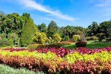Nice Day In Royal Botanical Ga...