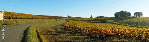 Fotografie, Obraz Paysage du Tarn, Occitanie
