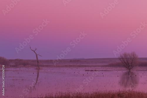 In de dag Candy roze Sunrise Reflection at Bosque del Apache NWR New Mexico