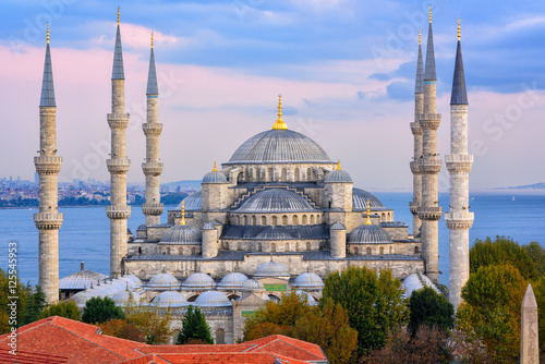 Aluminium Prints Turkey Blue Mosque and Bosphorus, Istanbul, Turkey