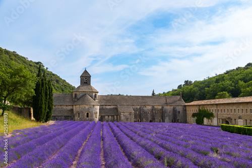 In de dag Lavendel An ancient monastery Abbaye Notre-Dame de Senanque