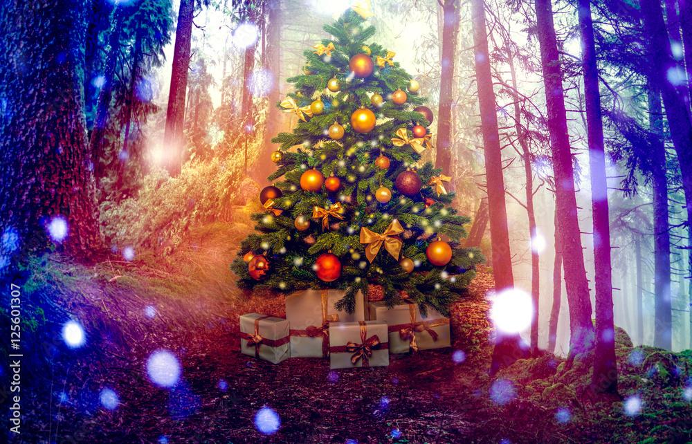 christbaum zu weihnachten im wald poster plakat 3 1. Black Bedroom Furniture Sets. Home Design Ideas