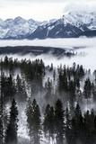 Tatry w zimie, krajobraz - 125606535