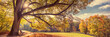 Leinwandbild Motiv Coburg, Hofgarten im Herbst