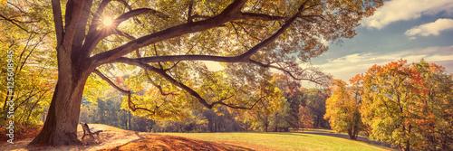 Foto Coburg, Hofgarten im Herbst