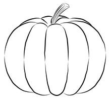 Outline Pumpkin Black Fine Lin...