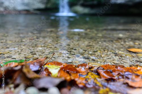 Türaufkleber Makrofotografie Wasserfall in der Natur im Wald
