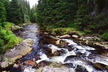 Roklansky Creek National Park ...