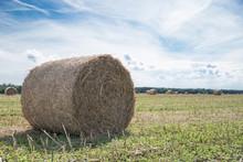 Freshly Mown Hay In Stacks.