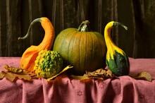 Martwa Natura - Dynie Na Stole Na Jesiennych Liściach