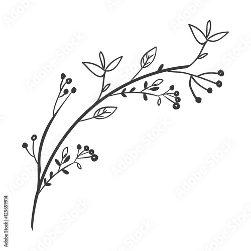 Foto gray scale decorative branch with leaves vector illustration