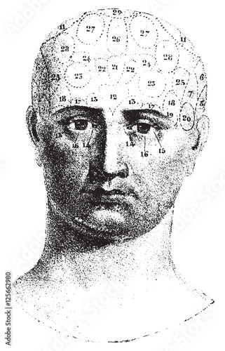 Obraz na plátně  Type cranial given by Spurzheim, front view, vintage engraving.
