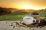 Gorąca filiżanka kawy z ziaren kawy na drewnianym stole i tło plantacje