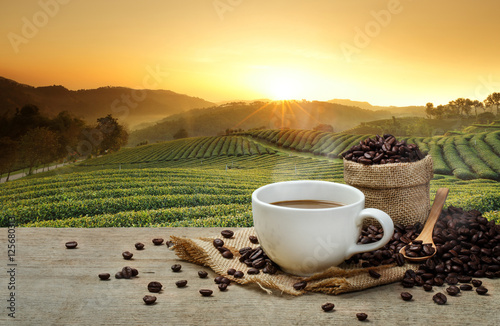 Fotografía Hot Coffee cup with Coffee beans on the wooden table and the plantations backgro