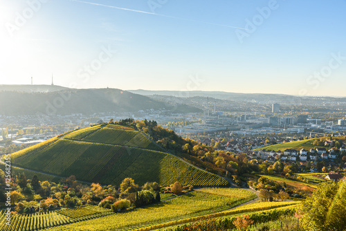 Foto auf Gartenposter Hugel Vineyards at Stuttgart - beautiful wine region in the south of Germany