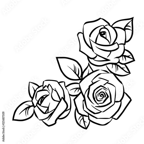 Three roses with leaves on a white background. Vector illustration. #125687509