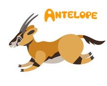 Vector Letter A - Antelope For Children Zoo Alphabet Illustration Cute Running Animal Isolated On White Background