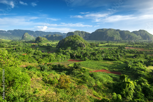 landscape of valley of Vinales,Cuba Slika na platnu