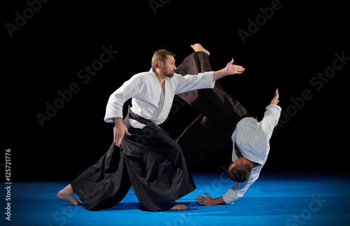 Martial arts fighters isolated Wallpaper Mural