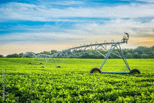 Fotografía  Irrigation System at Sunset