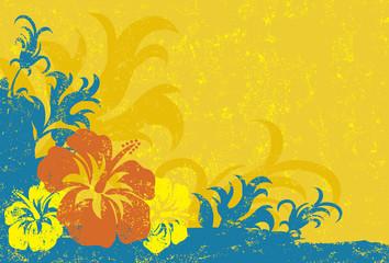 Fototapeta na wymiar Hibiscus Texture Background