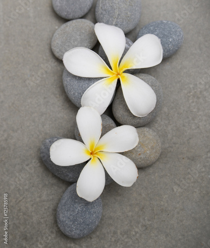 Spoed Foto op Canvas Spa frangipani with spa stones on grey background.