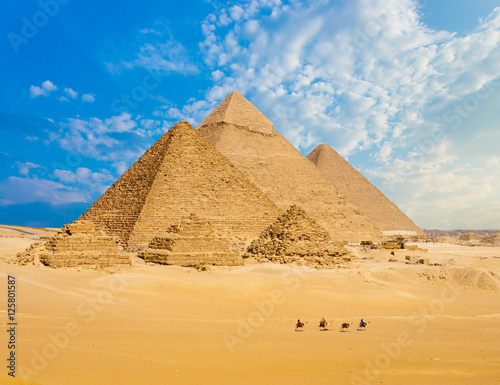 Photo  All Egypt Pyramids Camels Line Walking Wide Angle