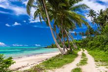 Tropical Beach On Samoa Island With Palm Trees And Road