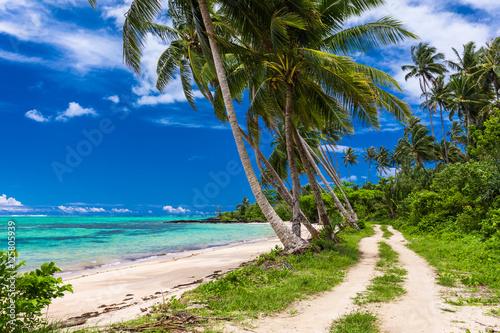 tropikalna-plaza-na-wyspie-samoa-z-palmami-i-drogi