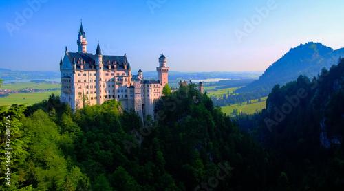 Foto auf Leinwand Schloss Neuschwanstein castle view from Marienbrucke, Bayern, Germany