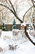 Beautiful Quiet Winter Day