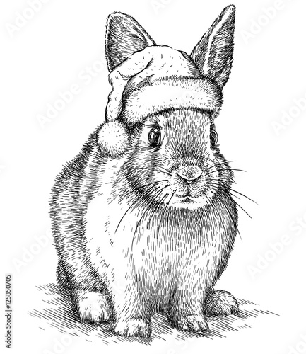 Foto auf Gartenposter Weihnachten Rabbit, black and white engrave. Christmas hat.