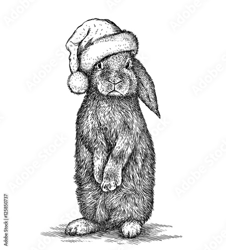 Printed kitchen splashbacks Christmas Rabbit, black and white engrave. Christmas hat.