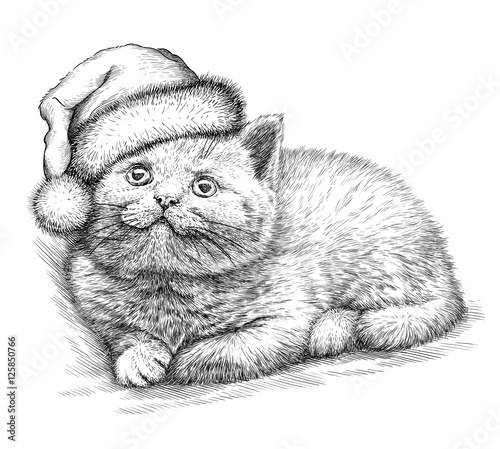 Foto auf Gartenposter Weihnachten Cat, black and white engrave. Christmas hat.