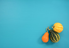 Orange, Green And Yellow Gourds On A Teal Background