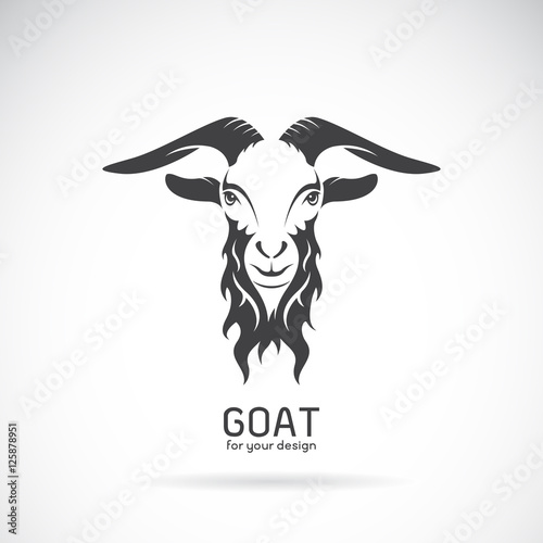 Photo Vector of a goat head design on white background. Animals.