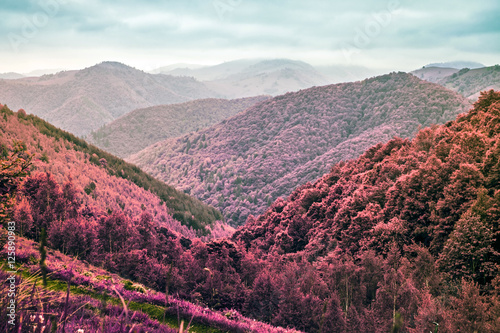 Foto op Plexiglas Crimson fog in the mountains - Infrared filter