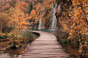 FototapetaWooden bridge through the river in autumn season