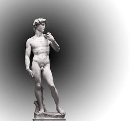 Fototapeta Popularne David Statue by Michelangelo in Galleria dell'Accademia (uffizi museum) in Florence. Italy.
