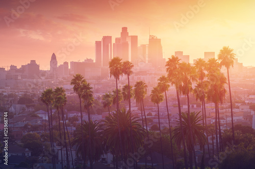 Fotografia Los Angeles hot sunset view with palm tree and downtown in background