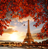 Fototapeta Fototapety z wieżą Eiffla - Eiffel Tower with autumn leaves in Paris, France