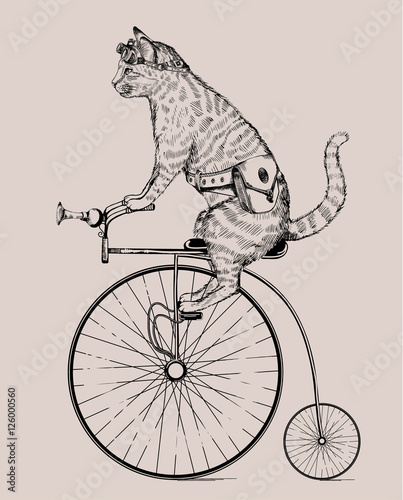 Obraz na płótnie steampunk cat on retro bicycle with bag and glasses, in etching style, isolated